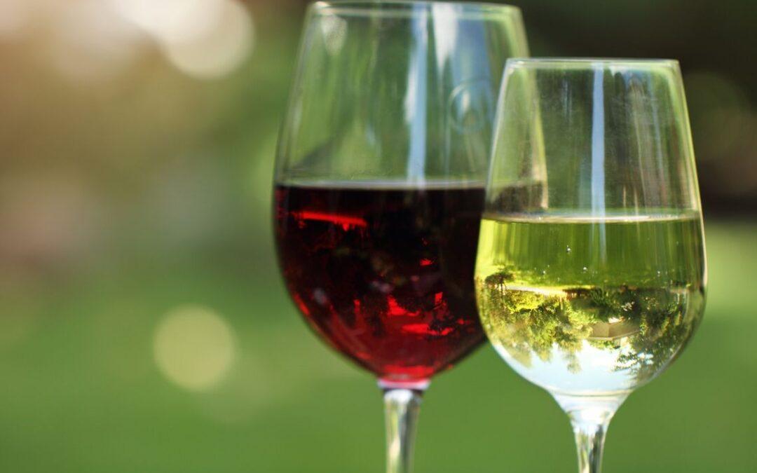 Green Market Wine Tasting with Dalla Terra